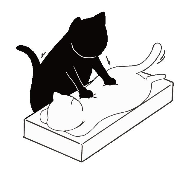 マッサージする猫のイラスト
