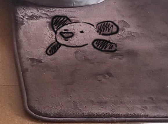 アルくんに見えたクマ